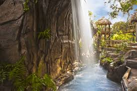 the rainforest comes to selby michael saunders real estate blog