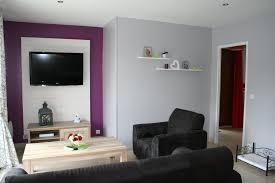 deco chambre gris et mauve peinture chambre violet