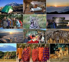 Oregon travel medicine images Wilderness and travel medicine african wildlife safari and jpg