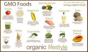 Organic And Whole Foods Survivalfoodplants Com