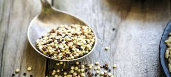 cuisine saine et gourmande idée repas saine et gourmande simple rapide et facile régal