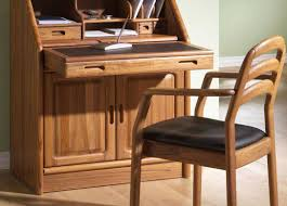 furniture beautiful scandinavian dining chairs pictures