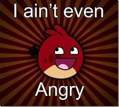Angry Bird Meme - image 135623 angry birds know your meme