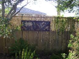 Backyard Screens Outdoor by Landscaping Ideas Backyard Privacy And Gates As Outdoor