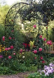 12 best rose gardens images on pinterest gardening garden