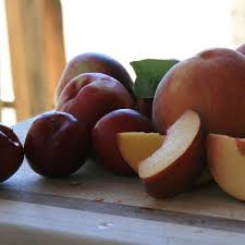 monthly fruit delivery monthly cornucopia of california organic fruit delivery things