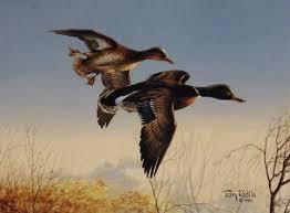 duck u0026 waterfowl art page 7 wildlifeprints com