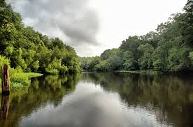 South Carolina how long does it take to travel to mars images Edisto river 12 counties south carolina sc jpg