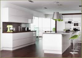 Buy Replacement Kitchen Cabinet Doors Modern Kitchen Cabinet Doors Replacement Caruba Info