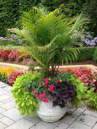 Tropical Potted Plants Outdoor - sometimes a large planter that is dramatic is all you need this