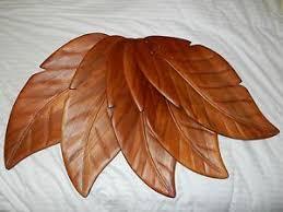 Ceiling Fan With Palm Leaf Blades by Hampton Bay Antigua Ceiling Fan On Popscreen