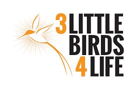 little birds 4 life