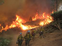 Type 1 Wildfire Definition by Common Denominators On Tragedy Fires U2013 Updated For A New Human