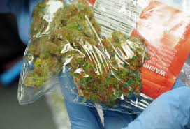 Colorado Flag Marijuana Marijuana Is 9 Of All Michigan Arrests And Other Facts On