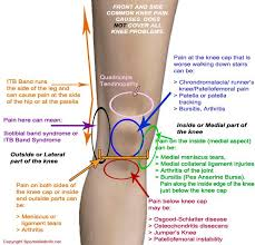 Right Knee Anatomy Anatomy Of The Right Knee Anatomy Knee Pain Joint Lateral