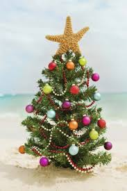 new tropical christmas ideas 83 for your house decoration with