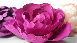 Peony Flowers by How To Make Peony Rose Paper Flower Diy Easy Tutorial Flowers