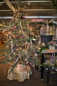 outlaw gardener molbak u0027s nursery delivers christmas sparkle