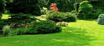 giardini da incubo come partecipare giardini da incubo come partecipare