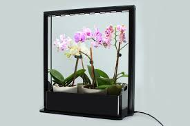 plant grow lights india grow plants indoor without sun complete