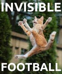 Invisible Cat Meme - invisible cats maze n memes online casino association