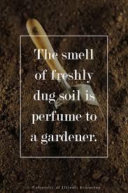258 best Garden Quotes & Humor images on Pinterest