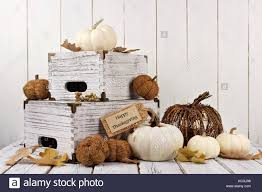 autumn decor happy thanksgiving tag with shabby chic autumn decor against a