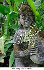 balinese garden stock photos balinese garden stock images alamy
