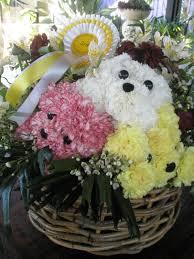 dog flower arrangement floral design studio sim carnation