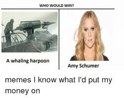 Whaling Meme - who would win a whaling harpoon amy schumer memes i know what i d