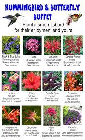 flower gardens archives my sunny gardens