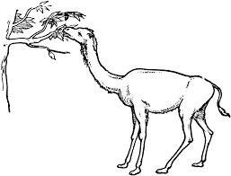 primitive giraffe camel clipart etc