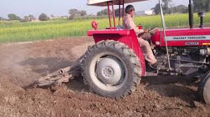 massey ferguson 240 tilling the field growing barely sowing