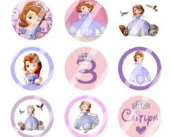 disney princess sofia custom birthday party 2