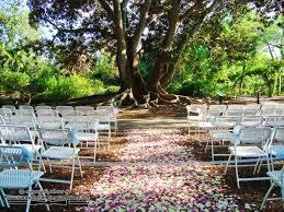 Botanical Gardens Sarasota Fl 108 Best Selby Botanical Garden Weddings Images On Pinterest