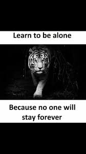 quotes learning to be alone 528 best life u0026 quotes images on pinterest life lesson quotes