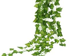 Best Plants For Hanging Baskets by Plant Silk Hanging Plants Formidable U201a Brilliant U201a Fascinate Silk