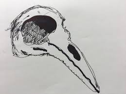 draw a bird day method two madness