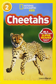 amazon com national geographic readers cheetahs 8601200553413