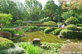 Botanic Gardens Brisbane City Japan Or Australia Brisbane Botanic Gardens Trip Student