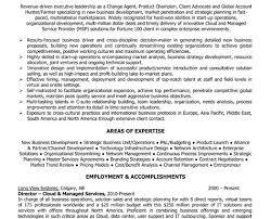 Executive Director Resume Example by Executive Director Resume Samples Executive Director Resume