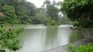 Botanical Gardens In Singapore by The Bayou Botanist A World Heritage Site Singapore Botanic Gardens