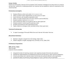 Profile Part Of A Resume Splendid Design Inspiration Skills To Put On A Resume For Customer