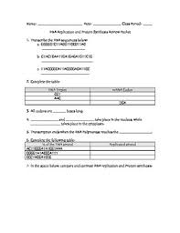 dna u0026 protein synthesis review packet with answer key tpt