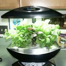 grow lights for indoor herb garden an indoor herb garden tides us over until spring vegetable gardener