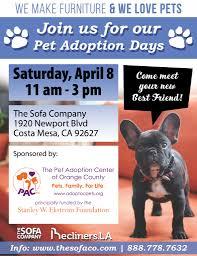 The Sofa Company by Sofa Company Adoption Event U2013 The Pet Adoption Center Of Orange County
