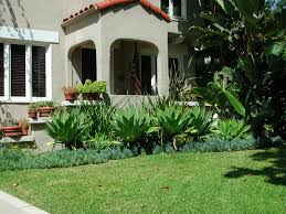 green grass with green plants and brown pots with plants in front