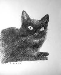 imagenes a lapiz de gatos dibujo gato3 jpg
