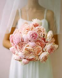 How Much Is A Dozen Roses Who Had Peonies How Much Did They Cost Weddingbee