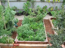 Permaculture Vegetable Garden Layout Raised Garden Beds Green Permaculture